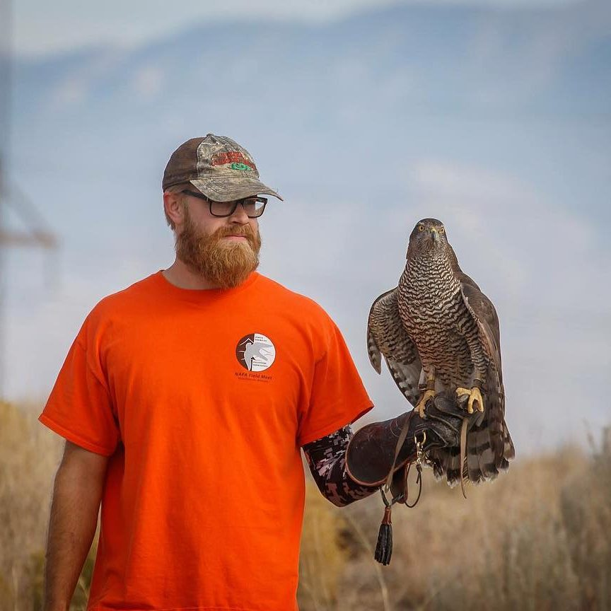Wildlife Control Falconer